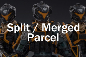 Split or Merged Parcel